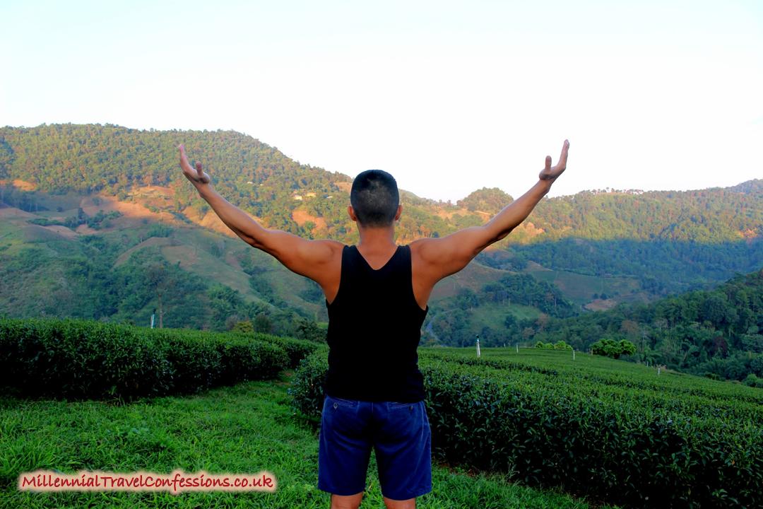 Breathtaking oolong tea plantation in Doi Mae Salong